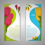 Tulip flowers banners Stock Image