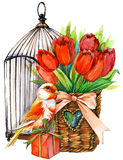 Tulip Flowers, canary bird and decorative birdcage. watercolor Royalty Free Stock Images