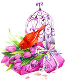 Tulip Flowers, canary bird and decorative birdcage. watercolor. Illustration background Royalty Free Stock Images