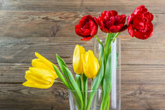 Tulip Flowers dans un vase en verre Photo stock
