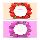 Tulip flowers frame composition. Royalty Free Stock Photo