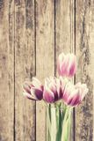 Tulip Flowers in Glass Bowl Royalty Free Stock Image