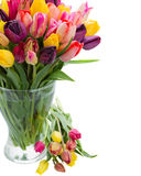 Tulip flowers in glass vase Royalty Free Stock Photos