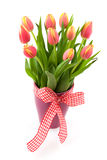 Tulip flowers in vase Stock Images