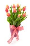 Tulip flowers in vase Stock Images