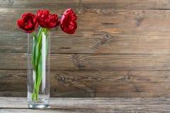 Tulip Flowers in Vase Royalty Free Stock Image