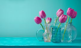 Tulip flowers in vases. Over blue background. Mother`s day or women day holiday celebration royalty free stock photography