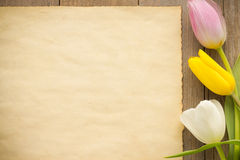 Tulip flowers on wood Royalty Free Stock Photo