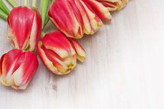 Tulip flowers on wooden background Royalty Free Stock Photos