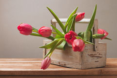 Tulip flowers in wooden box for Mother's Day celebration Royalty Free Stock Image