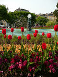 Tulip fountain. Fountain surrounded from tulips and other flowers stock photo