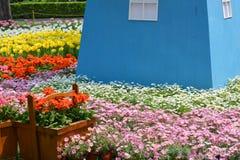 Tulip Garden images libres de droits