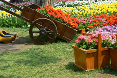 Tulip Garden with flower carriage Royalty Free Stock Photography