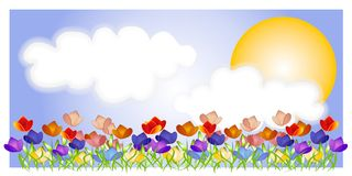 Tulip Garden Sky Sun Scene. A clip art illustration background of a tulip garden with sky, clouds and bright yellow sun. Could be used as a banner, logo, header Stock Photo