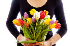 Tulip gift Stock Photography