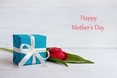 Tulip and gift for the mother. The concept of Happy Mother`s Day.  Stock Images