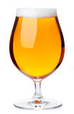 Tulip glass of pilsener beer isolated Royalty Free Stock Photo