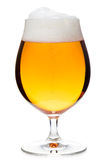 Tulip glass of pilsener beer isolated Royalty Free Stock Photography