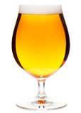 Tulip glass of pilsner beer with small head isolated Stock Image