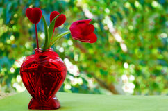 Tulip with heart in the vase Stock Images