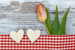Tulip and Heart Stock Images