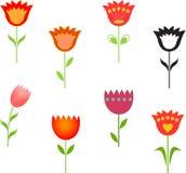 Tulip Illustrations, ejemplos de las flores Fotografía de archivo libre de regalías