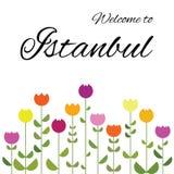 Tulip lale istanbul vector illustration