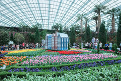 Tulip Mania, Gardens by the Bay. Tulipmania at the Flower Dome, Gardens by the Bay, Singapore Stock Image