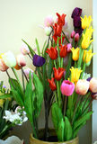 Tulip no flowerpot Imagem de Stock