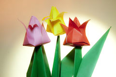 Tulip Paper Flowers Stock Image