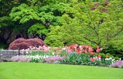 Tulip park Royalty Free Stock Photo