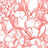 Tulip pattern. Gentle seamless background pattern with elegant tulip flowers Stock Photos