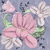 Tulip Pattern Imagen de archivo libre de regalías