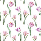 Tulip pattern Royalty Free Stock Photo