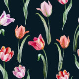 Tulip pattern Stock Photography