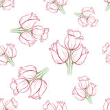 Tulip pattern_8. Floral seamless pattern with tulips on white background.  Spring flowers blossom hand drawn vector illustration. Vintage background with hand Royalty Free Stock Photos