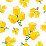 Tulip pattern_5. Floral seamless pattern with tulips on white background.  Spring flowers blossom hand drawn vector illustration. Vintage background with hand Stock Photos