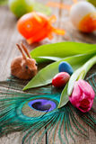 Tulip,peacock feather and easter eggs Royalty Free Stock Images