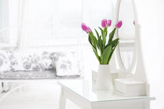 Tulip in room Royalty Free Stock Image