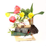 Tulip's , glasses, pen  and  book's Royalty Free Stock Image