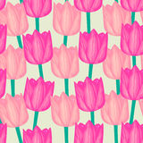 Tulip  seamless pattern Royalty Free Stock Images
