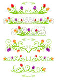 Tulip spring borders Royalty Free Stock Photo