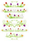 Tulip spring borders Royalty Free Stock Photo