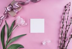 Tulip and spring flowers on pink background with greeting card. Waiting for spring. Flat lay, top view.  royalty free stock photos
