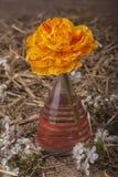 Tulip in Vase Stock Images