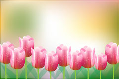 Tulip flower vector background Royalty Free Stock Photos
