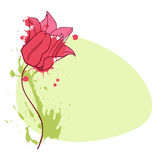 Tulip vignette Stock Image