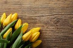 Tulip on wood background Royalty Free Stock Image