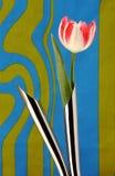 Tulipa artificial em uns vasos do metal imagens de stock