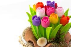 Tulipa colorida no flowerpod no saco Fotos de Stock Royalty Free
